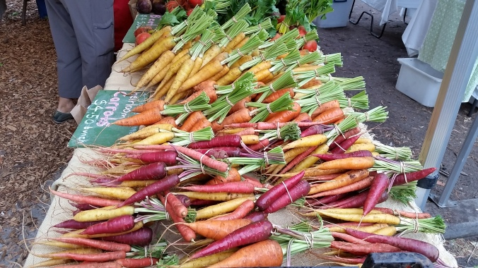 Comically beautiful carrots at the Abbotsford farmer's market.