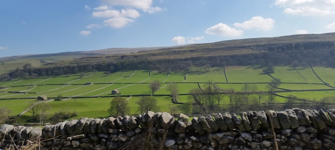 The Yorkshire Dales. I can't imagine how many people hours went into hauling all the stones out of the fields and making houses and fences out of them.